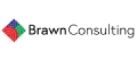 BRAWN CONSULTING
